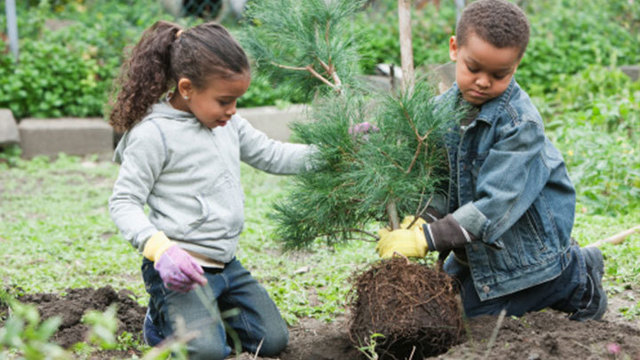 Quick 6 Things to Do on Earth Day